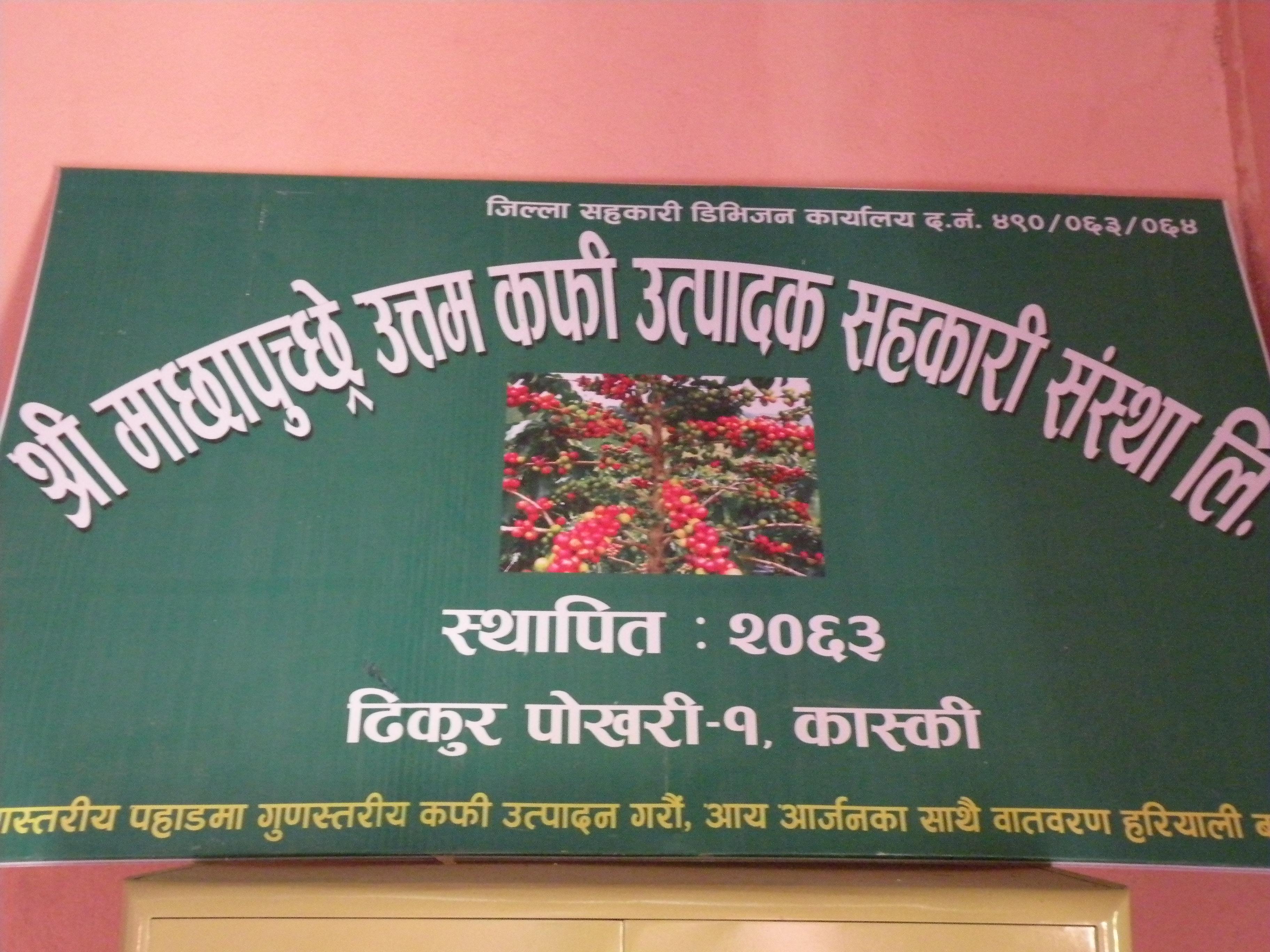 ネパールコーヒー生産者